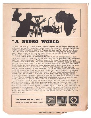 """A Negro World Is What We Want"""